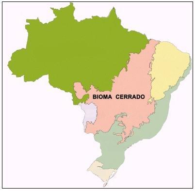 Mapa do Cerrado (Fonte: Instituto Brasileiro de Geografia e Estatística — IBGE.)