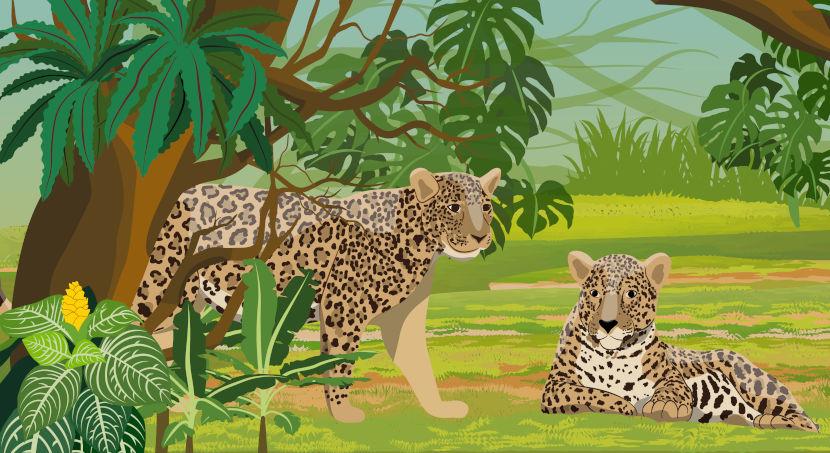 A onça-pintada é um dos símbolos da fauna do bioma Amazônia.
