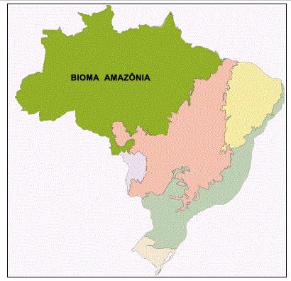 Localização do bioma Amazônia, segundo o Instituto Brasileiro de Geografia e Estatística (IBGE).