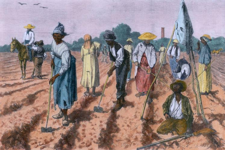 Após a abolição decretada em 1888, muitos dos escravos abandonaram os locais no qual viviam e procuraram outras fazendas para viver.