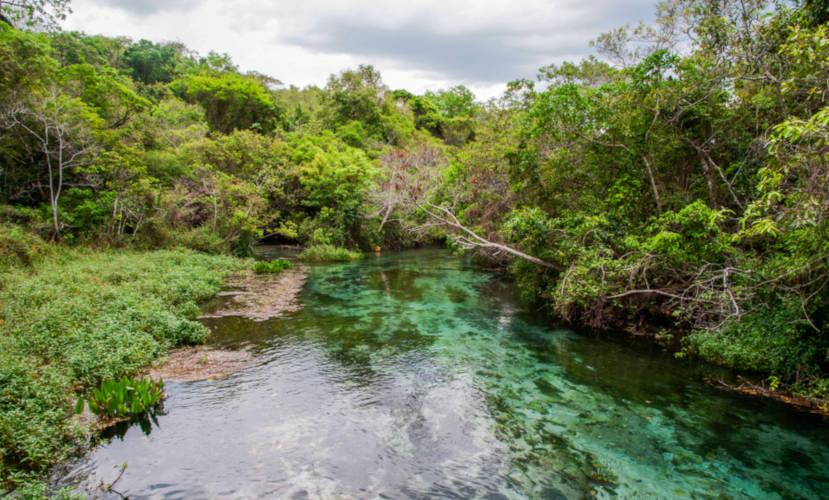 Bonito é um município brasileiro que apresenta diversas paisagens naturais.