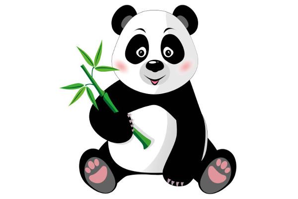 Os ursos pandas são animais que apresentam um padrão típico de coloração.