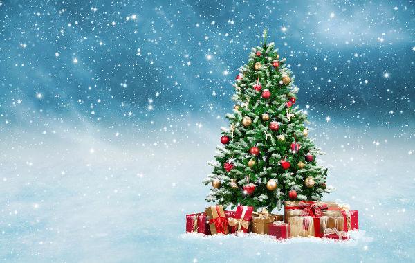Acredita-se que a árvore de Natal surgiu a partir de símbolos pagãos que foram ressignificados pelos cristãos com o passar do tempo.