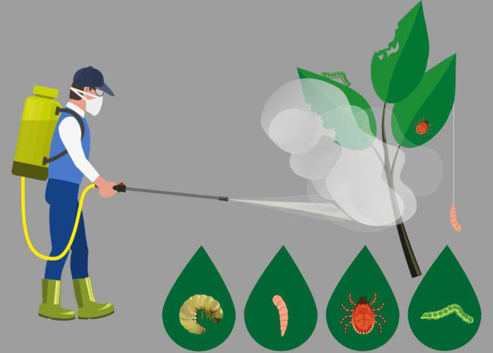 Resultado de imagem para agrotoxicos
