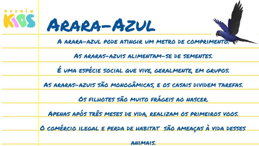 Arara Azul Curiosidades Caracteristicas E Habitat Escola Kids