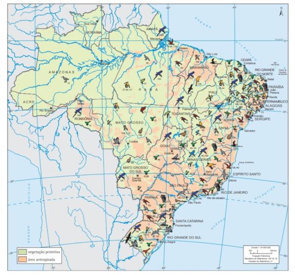 O mapa do Brasil - aves ameaçadas de extinção representa as espécies que estão ameaçadas em todo o território brasileiro. Fonte: IBGE