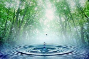 Água: um bem precioso.