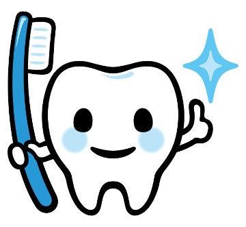 Os dentes são importantes no processo de digestão e merecem, portanto, cuidados