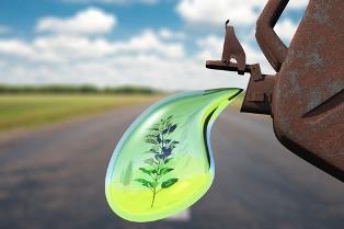 Os biocombustíveis ajudam a diminuir a poluição do ar