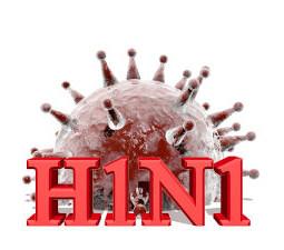 A gripe H1N1 é causada por um tipo de vírus Influenza