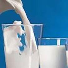 O leite é um alimento que contém muitos nutrientes importantes para a nossa saúde
