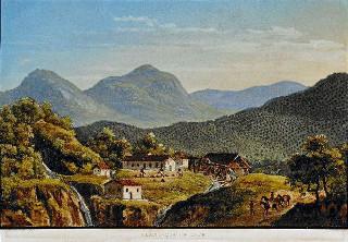 Quadro Plantação de Café (1839) do pintor Johan Jacob Steinmann (1800-1844)