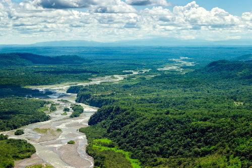 O domínio amazônico é constituído por áreas florestais de baixa altitude e declividade
