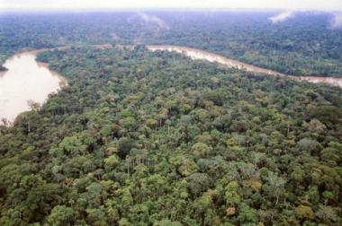 Os biomas possuem uma grande riqueza biológica. Na imagem, o bioma Amazônia