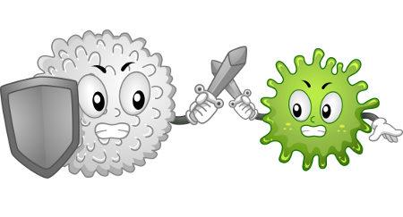 Os glóbulos brancos atuam na defesa do organismo.