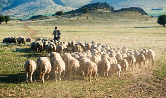 A vida no campo é um dos principais temas do Arcadismo.