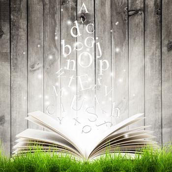 """As letras, palavras e frases constituem o texto, mas é preciso cuidado com os """"defeitos"""" textuais para não tirar o brilho da leitura"""