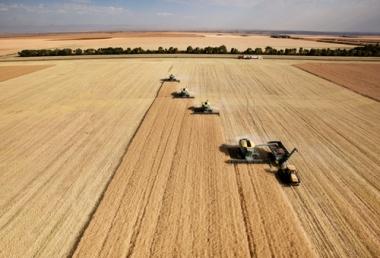 A reforma agrária luta contra a predominância dos latifúndios
