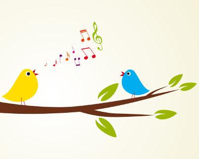 O canto das aves tem função principal de comunicação