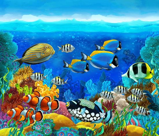 Os recifes de coral são formados por organismos vivos conhecidos genericamente como corais.