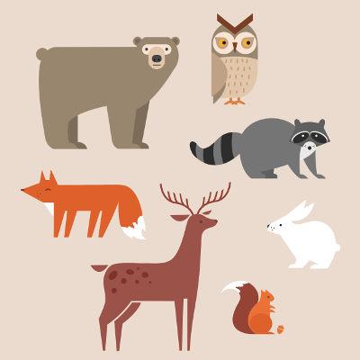 Ao conjunto de animais de uma área dá-se o nome de fauna