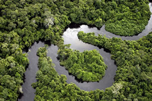 Floresta Amazônica – mata fechada cortada por rio
