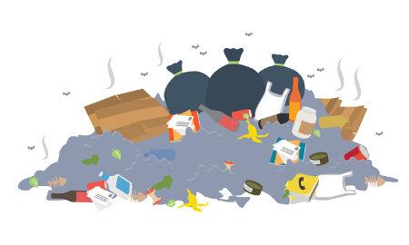 O lixão atrai muitos animais que podem transmitir doenças