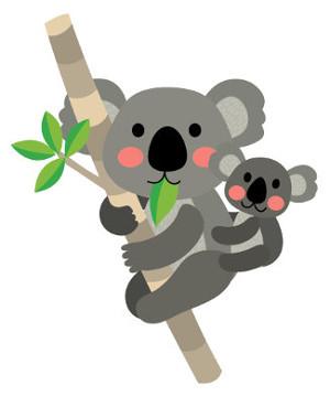 Os coalas são mamíferos marsupiais, ou seja, que possuem uma bolsa externa onde o filhote termina seu desenvolvimento
