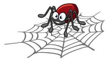 Nem todas as aranhas causam grave risco ao homem