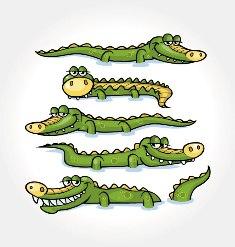 Os crocodilos são diferentes dos jacarés