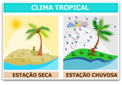 O clima tropical apresenta temperaturas elevadas e dois períodos distintos – um chuvoso e outro seco
