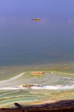 A maré vermelha é causada por uma proliferação excessiva de algas