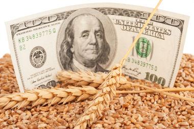 O agronegócio é responsável por uma grande circulação de dinheiro no mundo