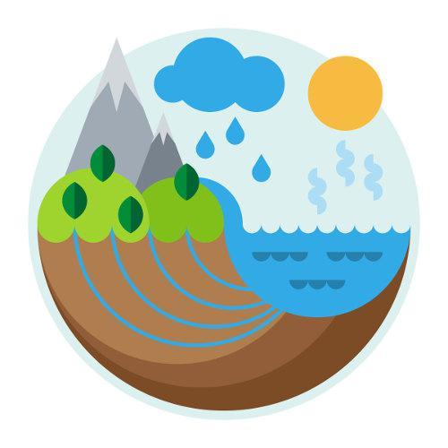 Nos ciclos biogeoquímicos, os elementos passam por componentes bióticos e abióticos de um ecossistema.