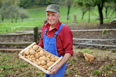 Os agricultores familiares atuam em pequenas propriedades rurais