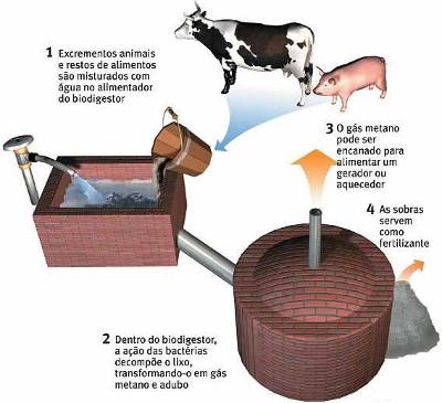 Esquema de produção de energia através da biomassa