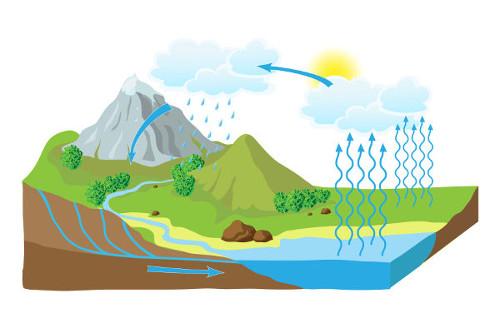 O ciclo da água garante que ela seja utilizada e, depois, retorne para o meio.