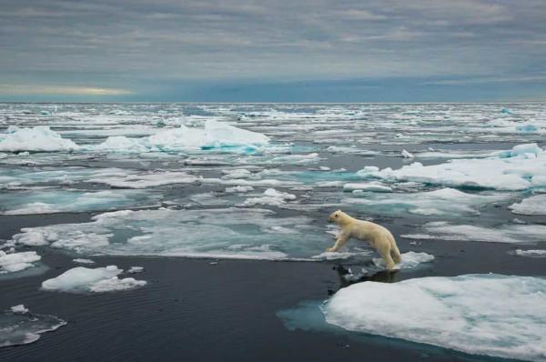 O derretimento das calotas polares é uma das consequências das mudanças climáticas.