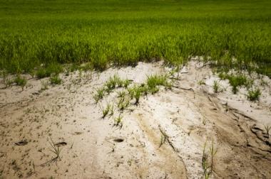 Avanço do processo de desertificação