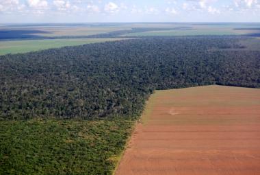 Expansão da fronteira agrícola sobre a Amazônia