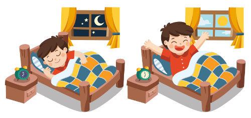 É importante sempre dormir e acordar no mesmo horário