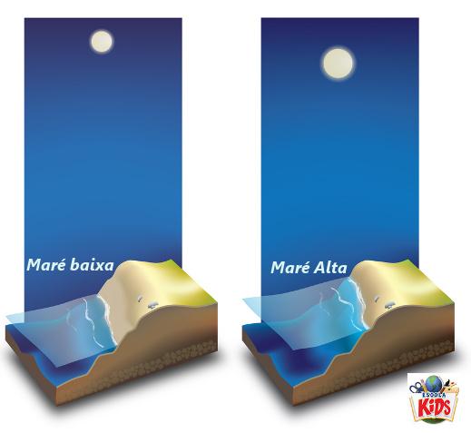 De acordo com o lado da Terra que está voltado para a Lua, a maré será alta ou baixa