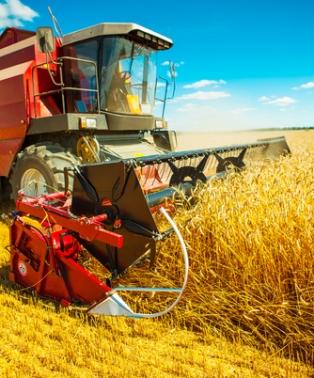 A mecanização do campo é responsável pelo desemprego e pelo êxodo rural