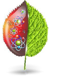 As plantas assim como tudo são formadas por átomos que são estudados pela química