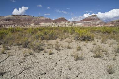 Essa área está passando pelo processo de desertificação