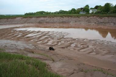 Esse rio encontra-se em estágio avançado de assoreamento *