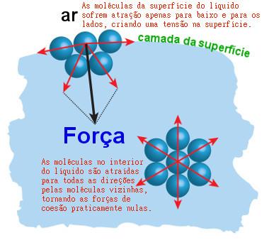 """A tensão superficial é uma """"película"""" formada pelas forças de atração entre as moléculas de água da superfície"""